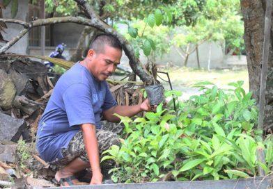 Jono Karno memperlihatkan bibit pohon yang menjadi 'tabungan' untuk berobat di Klinik Asri.