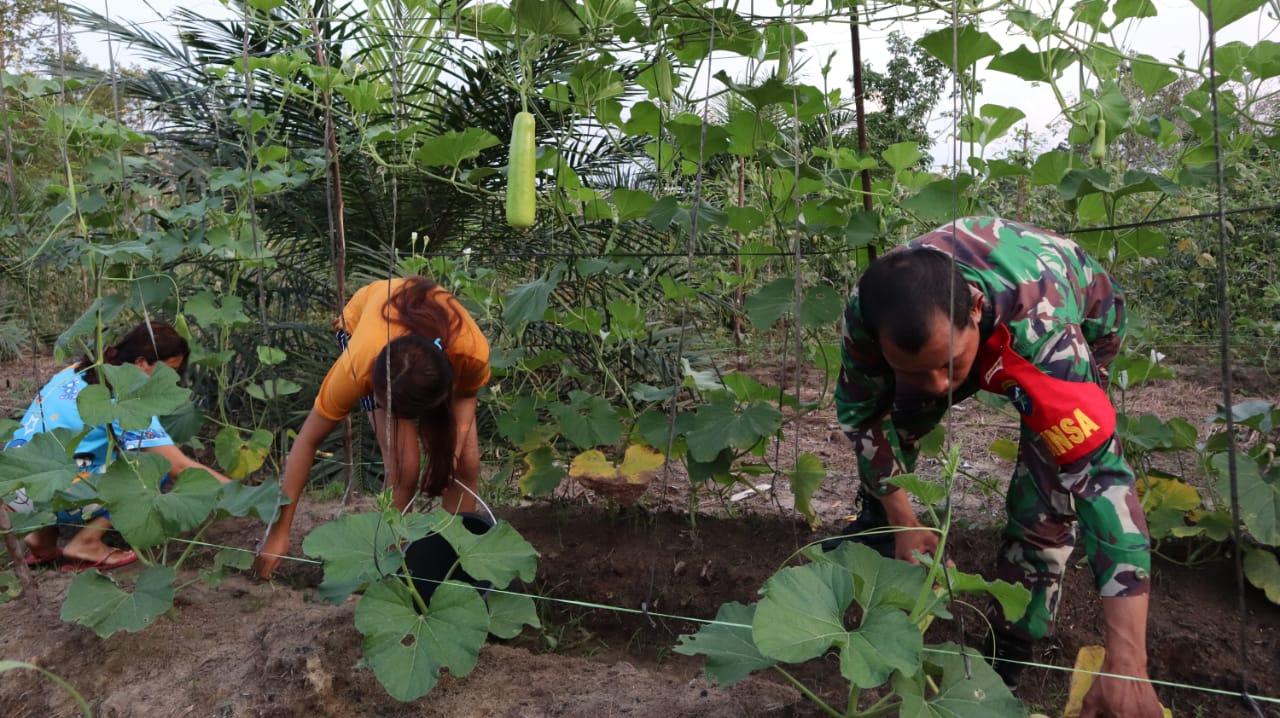Babinsa Koramil Mandor Beri Pendampingan Pertanian ke Warga Binaan