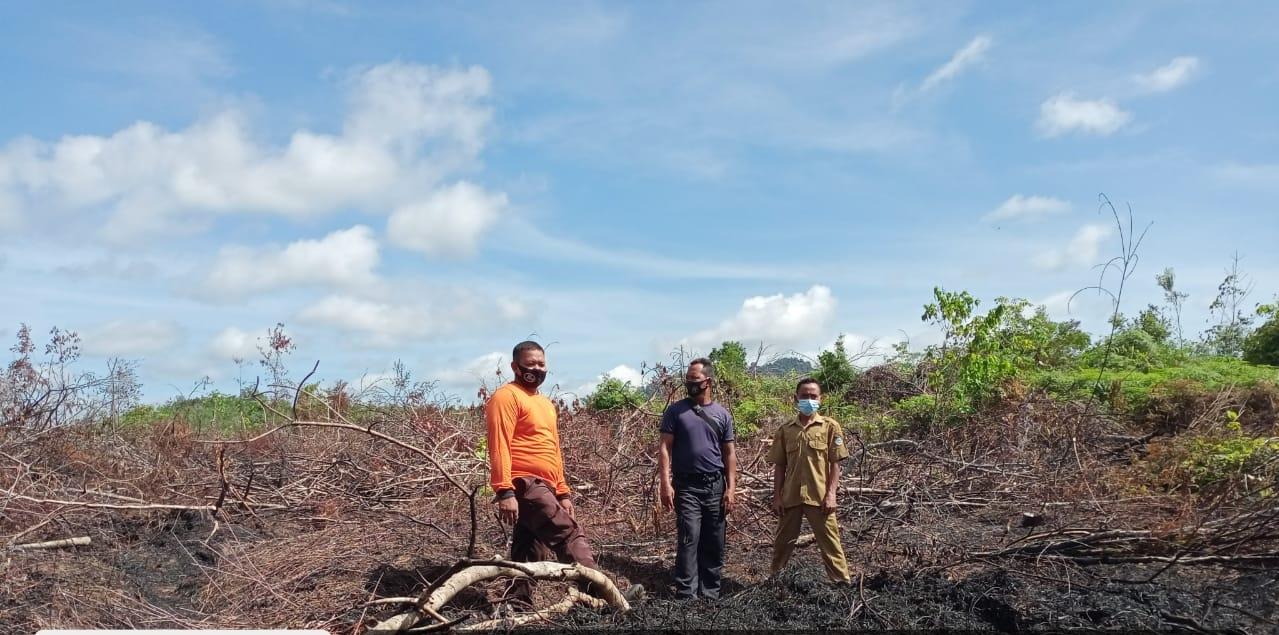 Satu Titik Api Terpantau Satelit di Wilayah Desa Tonang